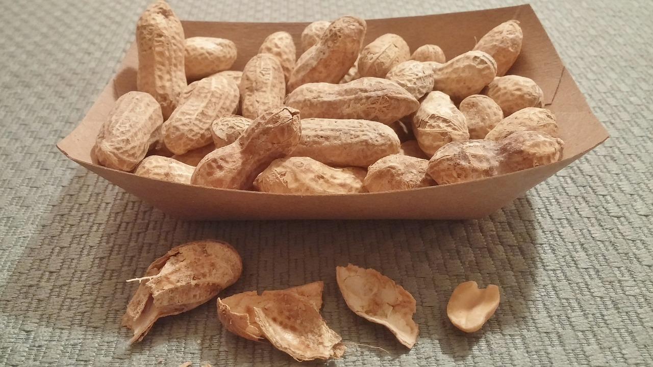 peanuts-468812_1280