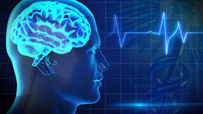 Brain+and+Health