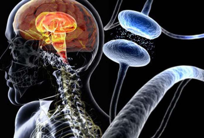parkinsons-disease-s1-illustration-of-parkinsons-disease-composite